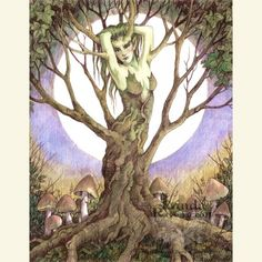ART PRINT DRYAD - Linda Ravenscroft