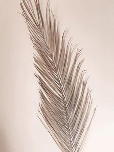 Dried Date Palms 60 Inch palms dried decor dried Dried Flower Bouquet, Flower Bouquet Wedding, Dried Flowers, Flower Bouquets, Sage Green Wedding, Maroon Wedding, Purple Wedding, Spring Wedding, Pineapple Palm
