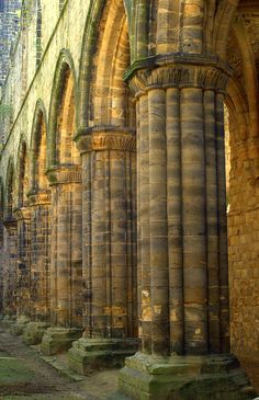A line of columns at Kirkstall Abbey