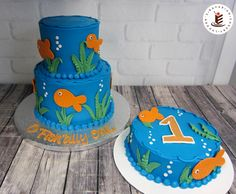 "This cake is ""O'Fish-ally"" awesome! Smash cakes continue to be popular and stacked cakes are also very common for party cakes. This adorable 2-tier feeds 15 people and is paired with a single layer smash cake."