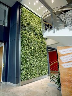 Businesses benefit from plants, increasing productivity and creativity, but sometimes they lack the horizontal space. So - go vertical. Learn the benefits of vertical gardens and green walls.