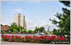 #56 Szülővárosom ÓZD szebbik arca - Magyarország