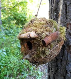 Outdoor Birdhouse Rustic Mossy bird house with by bearpawrustics
