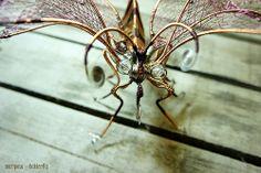 wire butterfly sculpture escultura mariposa alambre