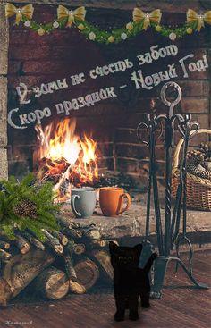 사진 - Google+