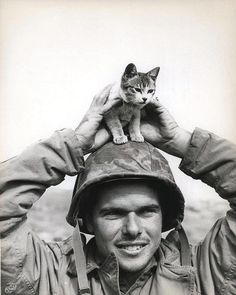 "☆ ""USMC Archive"" Marine ""captive,"" Iwo Jima, March 1945.。The caption reads ""Corporal Edward Burckhardt, of Yonkers, New York, sports a kitten that he found at the base of Suribachi Yama on the battlefield at Iwo Jima when he came ashore with the 5th Marine Division."" Photography From the Holland Smith Collection (COLL/2949) at the Marine Corps Archives and Special Collections.。☆"
