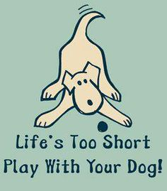 Life's too short - play with your dog!
