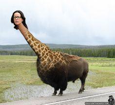 Janeane Giraffalo