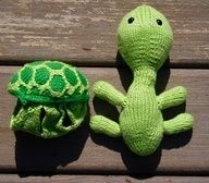 """Craft -could make multi colored shells to """"cothe"""" the turtle !"""