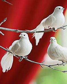 Beautiful White Peace Dove Ornaments for your Christmas Tree or decorating your home. Pigeon, Beautiful Birds, Animals Beautiful, Beautiful Scenery, Bird Ornaments, Christmas Ornaments, Christmas Time, Christmas Hacks, Christmas 2016