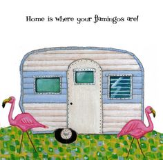 Home is where your flamingos are!