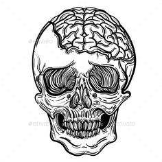 Buy Vector Illustration with a Human Skull and Brains by vavavka on GraphicRiver. Vector illustration with a human skull and brains. For print t-shirts or book coloring. Brain Drawing, Brain Art, Anatomy Drawing, Skull Tattoos, Body Art Tattoos, Brain Tattoo, Animal Print T Shirts, Human Skull, Human Human