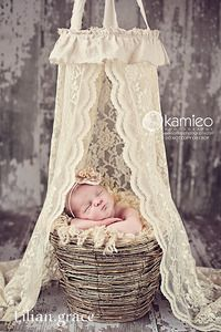 beautiful lace and linen newborn canopy ...to be used as a photography prop onlyphoto by kamieo photography