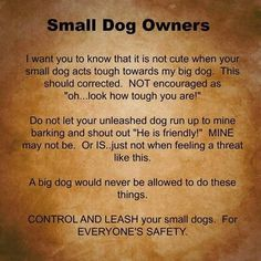 #quote #dog