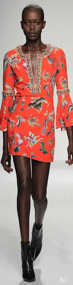 Spring 2016 Ready-to-Wear Andrew Gn