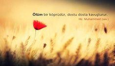 Islamic Dua, Haruki Murakami, Allah, Quotes, Movie Posters, Quotations, Film Poster, Quote, Shut Up Quotes