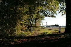 Railroad Tracks, Sidewalk, Photos, Country Roads, Pictures, Walkway, Photographs, Pavement