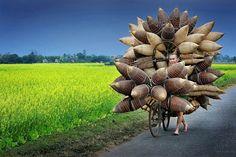 Ly Hoang Long 攝於越南興安省的村落,一名男子載著滿車的竹製捕魚籃走在田野間。 獎項:最佳單張影像類 特別表揚獎
