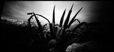 Lycabettus Hill - pinhole photography