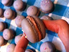 Macarons filled with Kinder Chocolate Ganache and crushed M