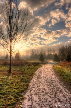 ~Walk Into The Light~ By Ernie Kasper #trail   #ice  #frost #clouds #nature   #tree  #beautiful #sunlight #photo
