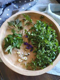 PASTU domov: Koktejl z plevelů Herb Garden, Smoothie, Herbs, Plants, Herbs Garden, Smoothies, Herb, Plant, Planets