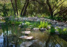 Rancho Alamar mediterranean landscape #DuckPond