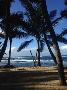 Maui baby
