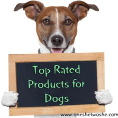 Top Rated Products For Dogs (our New Puppy & Our Halloween