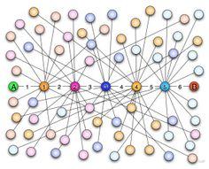 Le Origini dei Social Networks: la Teoria dei Sei Gradi di Separazione