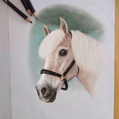 En crayons de couleur et aux pastels secs Crayons, Pastels, Horses, Portrait, Animals, Color Pencil Picture, Pony, Paint, Drawing Drawing