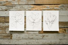 Magnolia Floral Print – The Magnolia Market Botanical Prints like these, but maybe much larger for the wall.