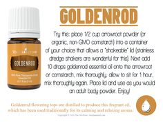 DIY your own adult body powder with this recipe using Young Living's Goldenrod essential oil. Goldenrod flowering tops are distilled to produce this fragrant oil, which has been used traditi… Essential Oil For Men, Oils For Men, Yl Essential Oils, Young Living Essential Oils, Essential Oil Blends, Yl Oils, Herbal Oil, Young Living Oils, Herbal Medicine