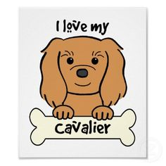 I Love My Cavalier King Charles Spaniel Posters by dogcartoons