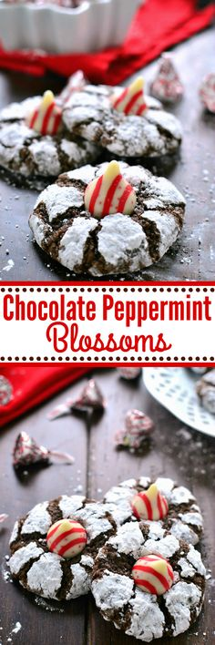 These Chocolate Peppermint Blossom Cookies are loaded with rich chocolate and peppermint and topped with a Candy Cane flavored Hershey's Kiss. Perfect cookies for mint (and chocolate) lovers everywhere!