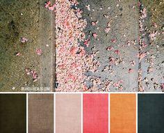day 5 palette