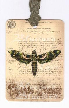 Vintage moth tags