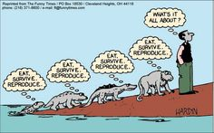 love Archives - The Funny Times Evolution Cartoon, Human Evolution, Cleveland, Existential Therapy, Sense Of Life, Funny Times, Meaning Of Life, Critical Thinking, Sarcasm