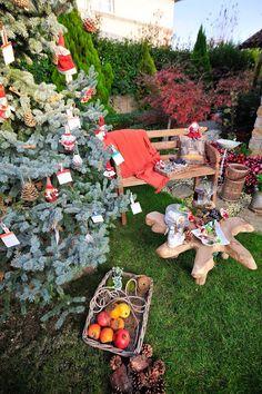 cafe craft istanbul: My tree