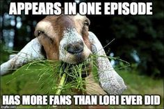 The goat was more popular than Lori and to be perfectly honest I can see why hahaha