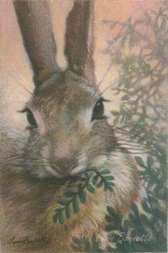 "Art by Lynn Bonnette: ""Bunny Munching Ferns"""