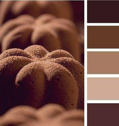 brown and beige, cinnamon color, color combination in the interior