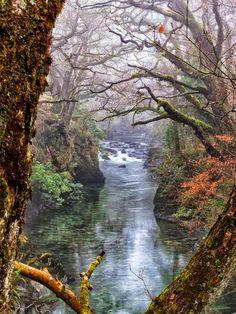 Loch Lamond, Scotland