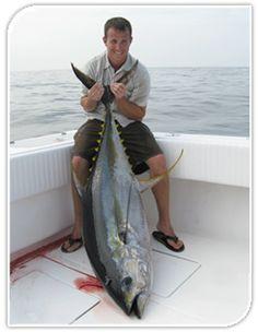 Offshore tuna fishing in louisiana