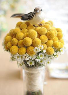 Billy Button bouquet.