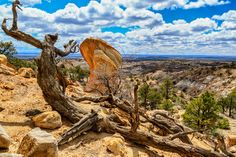 Some of the awesome beauty of Northern New Mexico! Ceja Pelon Badlands by Ken Piorkowski, via Flickr