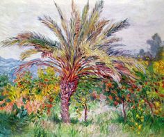 Claude Monet - Palmier à Bordighera, 1884