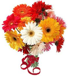 https://floristxpress.com/send-flowers/online-flower-delivery-to-Chennai Florist Xpress is the best online local florist in Chennai for same day delivery of fresh flowers bouquet, cakes & gifts at very cheap rates & free shipping with no hidden charges. We have various options for sending flowers as per occasion like birthday flowers, anniversary flowers, valentine day flowers to your loved ones across Chennai city.