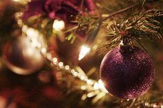 Purple christmas decor  (mom's last christmas tree theme was purple and gold)