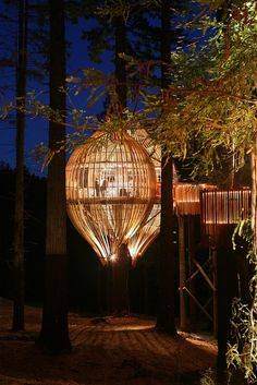The Yellow Treehouse Restaurant at night near Auckland, New Zealand (by Channelbeta).